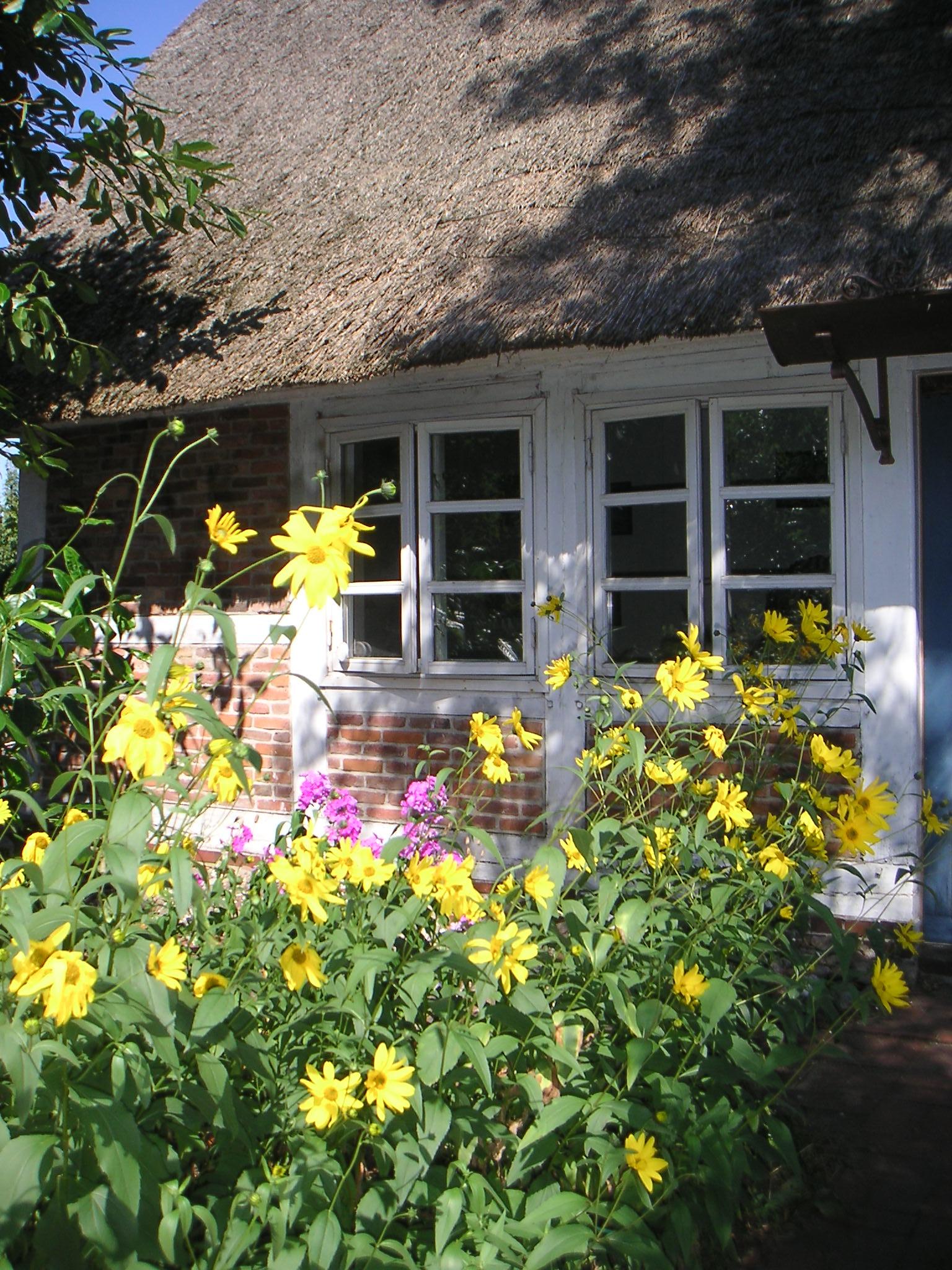 Blumen mit Haus