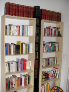 Nur Bücher, die wiederholt gelesen werden möchten, dürfen in dieses Regal. Alphabetisch und nach Sprachen sortiert.